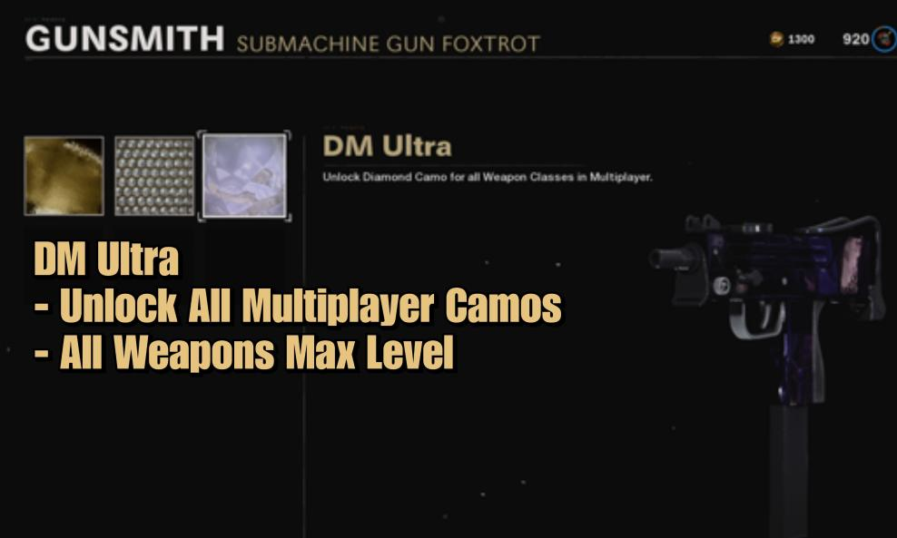 $250 - DM Ultra Unlock All Multiplayer Camos + All Weapons Max Level cover